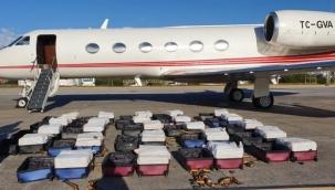 Eski AKP Milletvekili Adayı'nın şirketine ait jette kokain dolu valizler ele geçirildi!